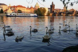 Достопримечательности Праги фото и описание
