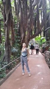 Лоро парк Тенерифе фото и  отзывы
