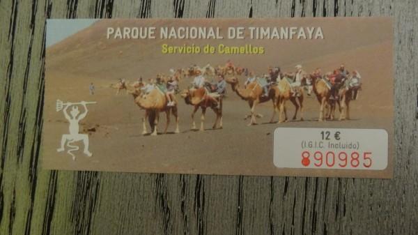 катание на верблюде цена
