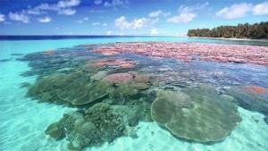 Самые опасные пляжи мира : топ 10, остерегайтесь!