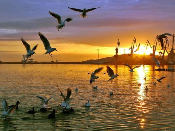 Крым отдых 2015 цены частный сектор Феодосия