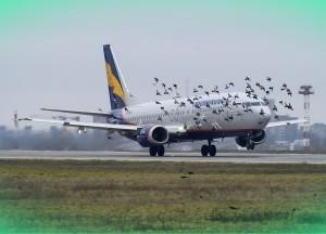Аэропорт в Ростове-на-Дону : история, месторасположение, особенности