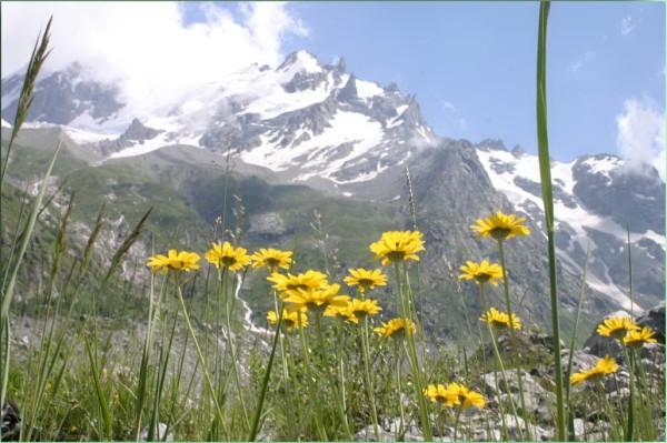 Приэльбрусье горнолыжный курорт цены