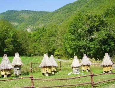 Поселок Бета: описание маленькой жемчужины Краснодарского края