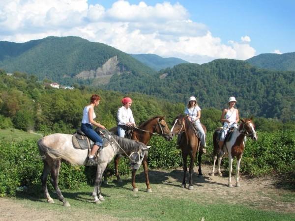 Конные прогулки по ущелью Манах в Ольгинке