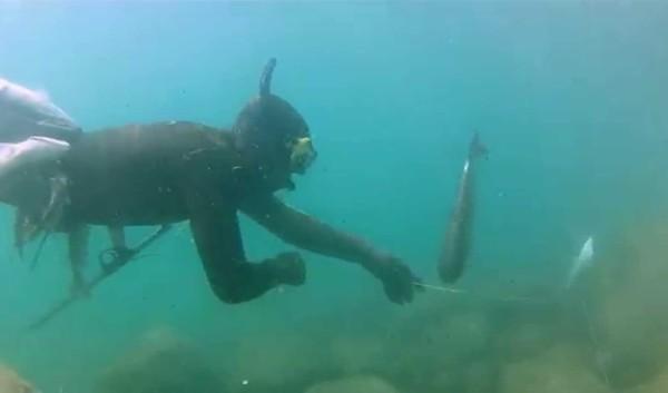 Подводная охота в Веселовке