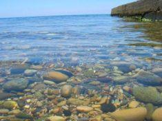 Гагра отдых цены частный сектор на берегу моря