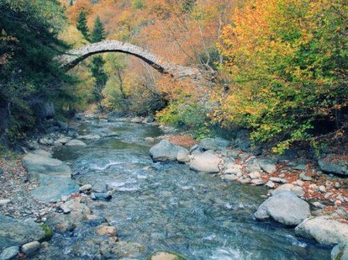 Мост царицы Тамар в Сухуми фото
