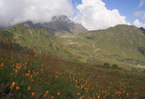 Перевал Химса в Сухуми фото
