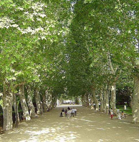 Parque Los Campos Eliseos de Lerida