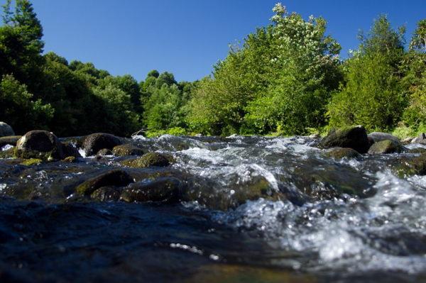 Река Чолоки в Кобулети