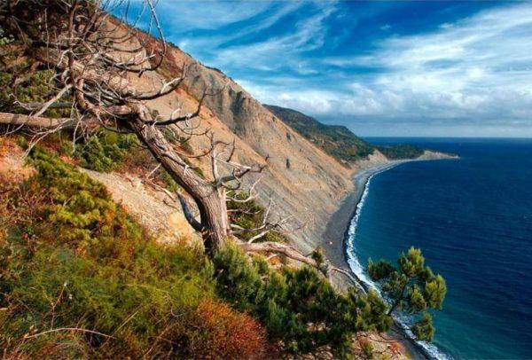 Большой Утриш особенности климата и природы