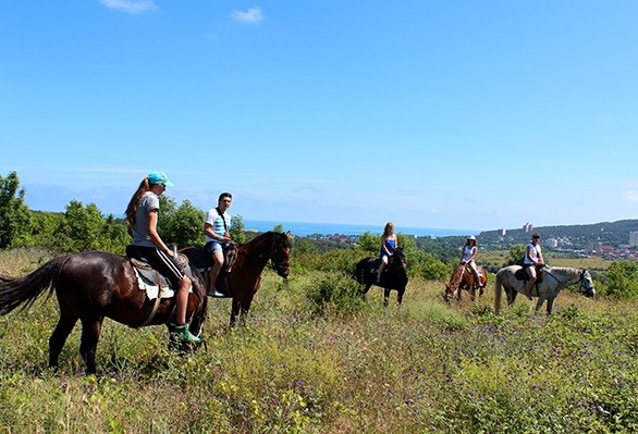 Конные прогулки по Дивноморскому