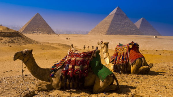 Зима в Египте