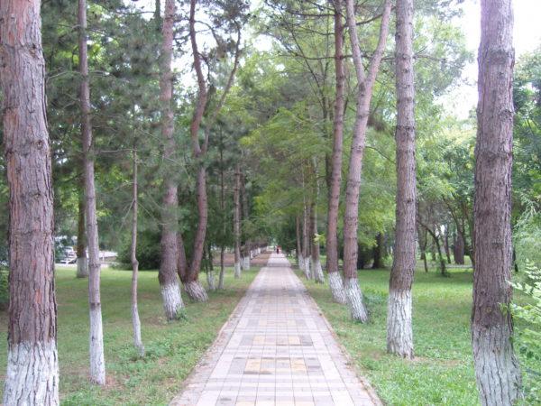 Терренкур Жемчужный в Анапе
