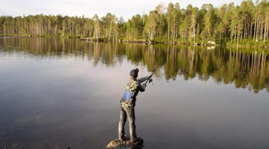 Рыбалка в Карелии базы цены