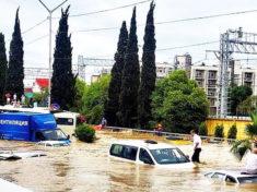 Куда сходить в Сочи в дождь