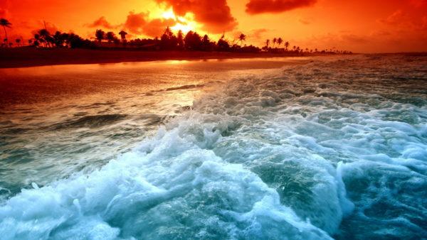 Отдых на Красном море зимой