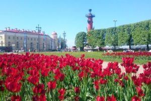 Куда пойти в Санкт-Петербурге туристу в первый раз