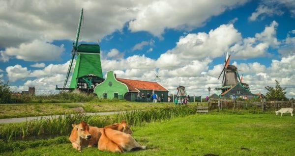 Королевство-Нидерланды-достопримечательности